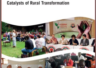 Catalyst on rural transformation